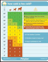 Dog Temperature Chart Blue Toes Sassy Jack