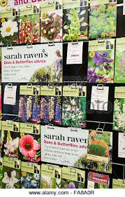 Flower Display Stand For Sale Packets Of Johnsons Sarah Raven Bee And Butterfly Friendly Flower 94