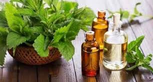 5 ways to use peppermint essential oil