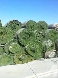 artificial grass las vegas. Artificial Grass Only 50 CENTS Per Sq Ft For Sale In Las Vegas, Nevada Vegas