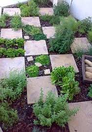 Small Picture Herb garden planted checkerboard paving stones Xeriscaping idea