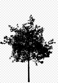 Silhouette Tree Illustration Transparent Png Image Clipart Free