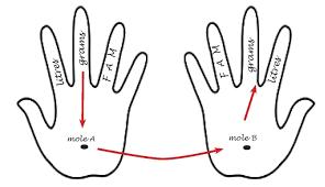 Mole Chart Chemistry