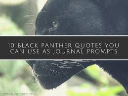 10 Black Panther Quotes You Can Use As Journal Prompts Leanne Lindsey