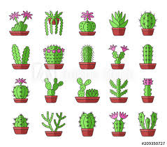 green cactuses with pink flowers desert plants for terrariums and rock gardens cartoon icon set