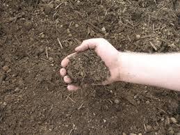 garden soil berland md ebyland llc