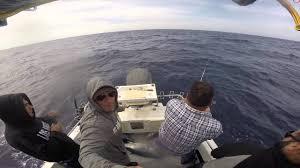 tuna port macdonnell 2015 - YouTube