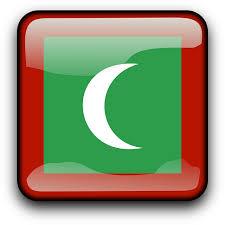 Image result for maldives flag images