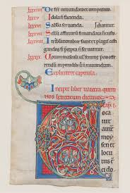 manuscript illumination initial v from a bible work of art  manuscript illumination initial v from a bible