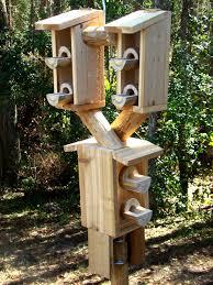 wooden bird feeders on a pole