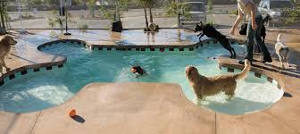 cool shaped swimming pools. Bone-shaped Pool For Dogs To Play And Cool Off. Such A Great Idea Shaped Swimming Pools O