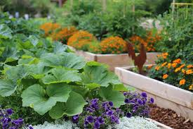 raised garden beds ideas with style