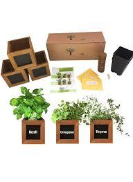 how to herb garden indoors outdoors