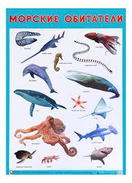Интерактивный <b>плакат Мозаика</b>-<b>Синтез</b> Морские Обитатели