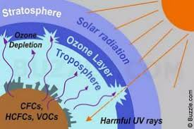 essay on ozone layer in punjabi  essay on ozone layer in punjabi