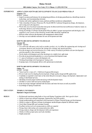 Download Software Development Team Lead Resume Sample as Image file
