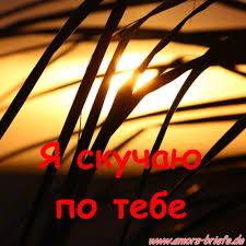 Ich Vermisse Dich Auf Russisch Romantische Bilder Und Sprüche