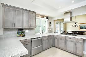Shades of Gray modern-kitchen