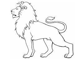 Disegno Da Colorare Leone Animals Disegno Leone Leone E Disegni