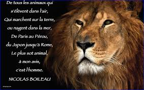Le Lion Marche Seul Citation Beautiful Citations Page 3 Bienvenue