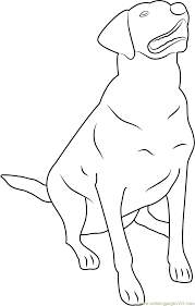 Small Picture Labrador Retriever Coloring Page Free Dog Coloring Pages
