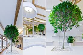 greenhouse office. office greenhouse by openad 10 r