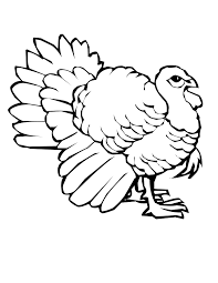 Small Picture Free Printable Turkey Coloring Pages For Kids