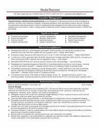 Personal Financial Statement Pdf And Financial Worksheet For