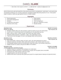 Resume Summary Statement Examples Cool Resume Career Summary Examples Resume Pro