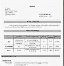 Sample Cv Graduate Job Example Resume Executive Administrative