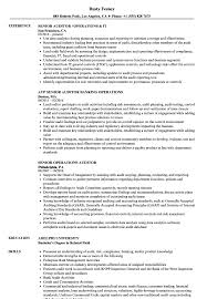 Auditor Resume Sample Operations Auditor Resume Samples Velvet Jobs 10