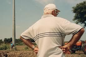 it s nice that paolo zerbini photographs farming fanatics in an social media