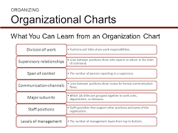 What Does An Organizational Chart Show Organization Structure And Design Ppt Video Online Download