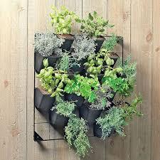 ... Beautiful Inspiration Hanging Wall Garden Design ...