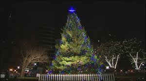 Christmas Lights Boston Area Boston Commons Christmas Tree Google Search Christmas