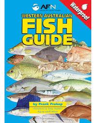 Western Australia Fish Id Guide Wa