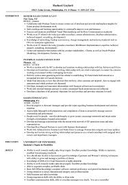 Sales Consultant Resume Therpgmovie