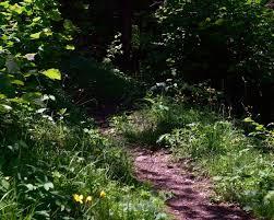 byron shutz nature trail