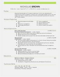 Hospital Invoice Sample Rn Resume Template Beautiful Rn Resume