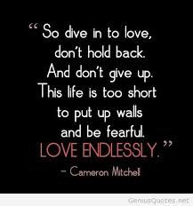 love endless by cameron mitchell
