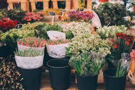 Çiçekçi esnafı: Bu piyasayı seyyar çiçekçiler öldürdü! - Kocaeli Gazetesi