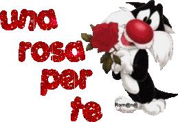 Risultati immagini per gif gatto con una rosa