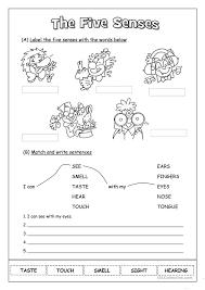 Free Worksheets » The Five Senses Worksheet - Free Math Worksheets ...