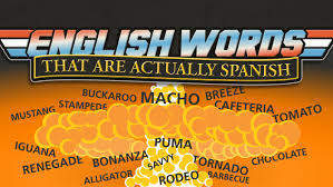 143 English Words That Are Actually Spanish