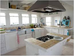 Kitchen Wall Paint Color Kitchen Designs Elegant Paint Colors For Kitchen Walls With White