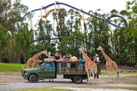 new busch gardens offer invites florida residents to experience free serengeti safari with admission