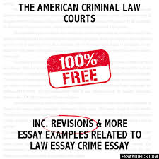 the american criminal law courts essay the american criminal law courts hide essay types