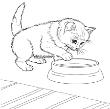 Small Picture Javanese Kitten Coloring Page Free Printable Coloring Pages