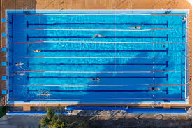 Creativity Olympic Swimming Pool Top View Guess Who Dumped 13200 Pools Worth Of And Models Design