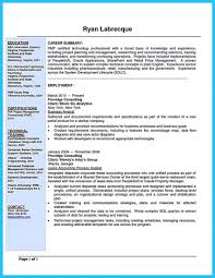 Example Of Business Analyst Resume 61 Images Insurance Objective For